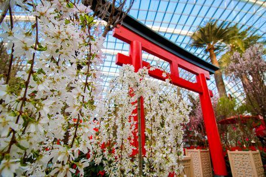 Gardens by the Bay Hello Kitty Sakura 4