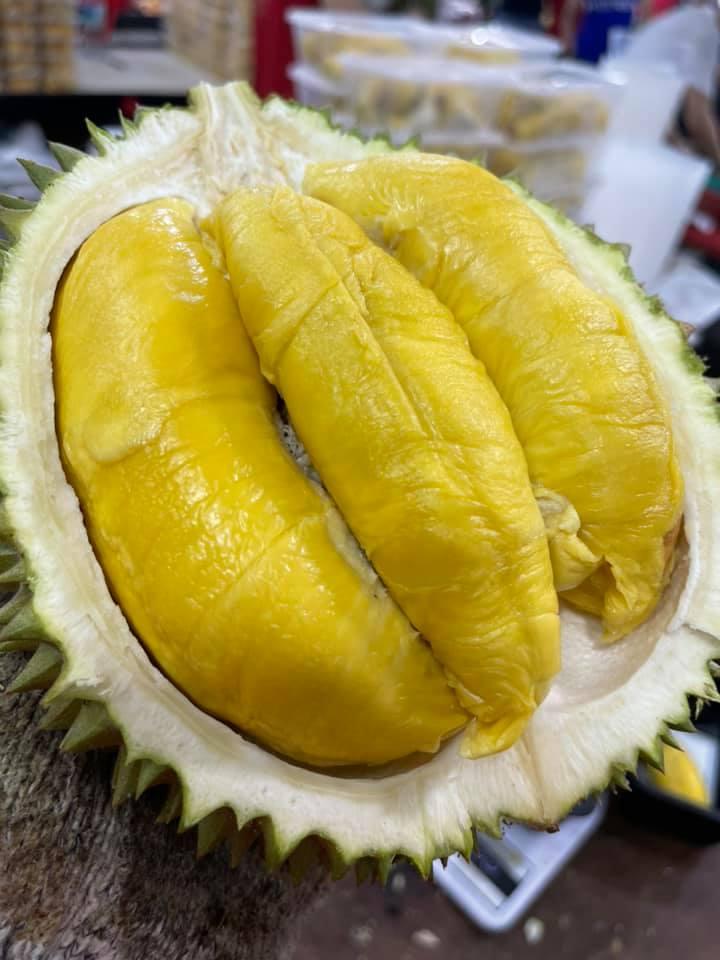 durian promo 1